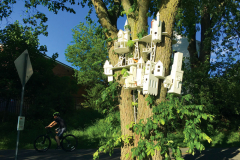 Colony, a whimsical village for local birds by sculptor Christopher Frost.